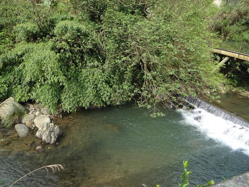 大坑溪上游.JPG